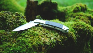 Best Pocket Knife reviews