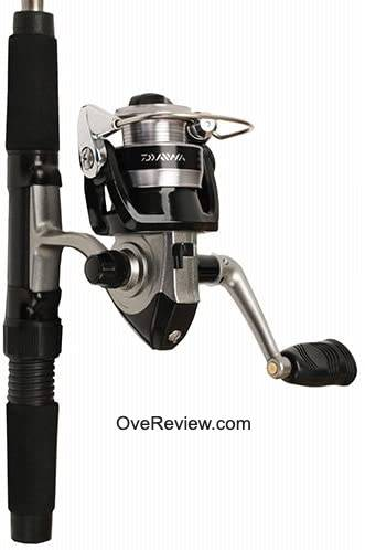 Daiwa Minispin Best Fishing Poles