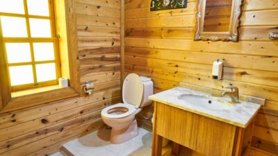 Best-Heated-Toilet-Seats