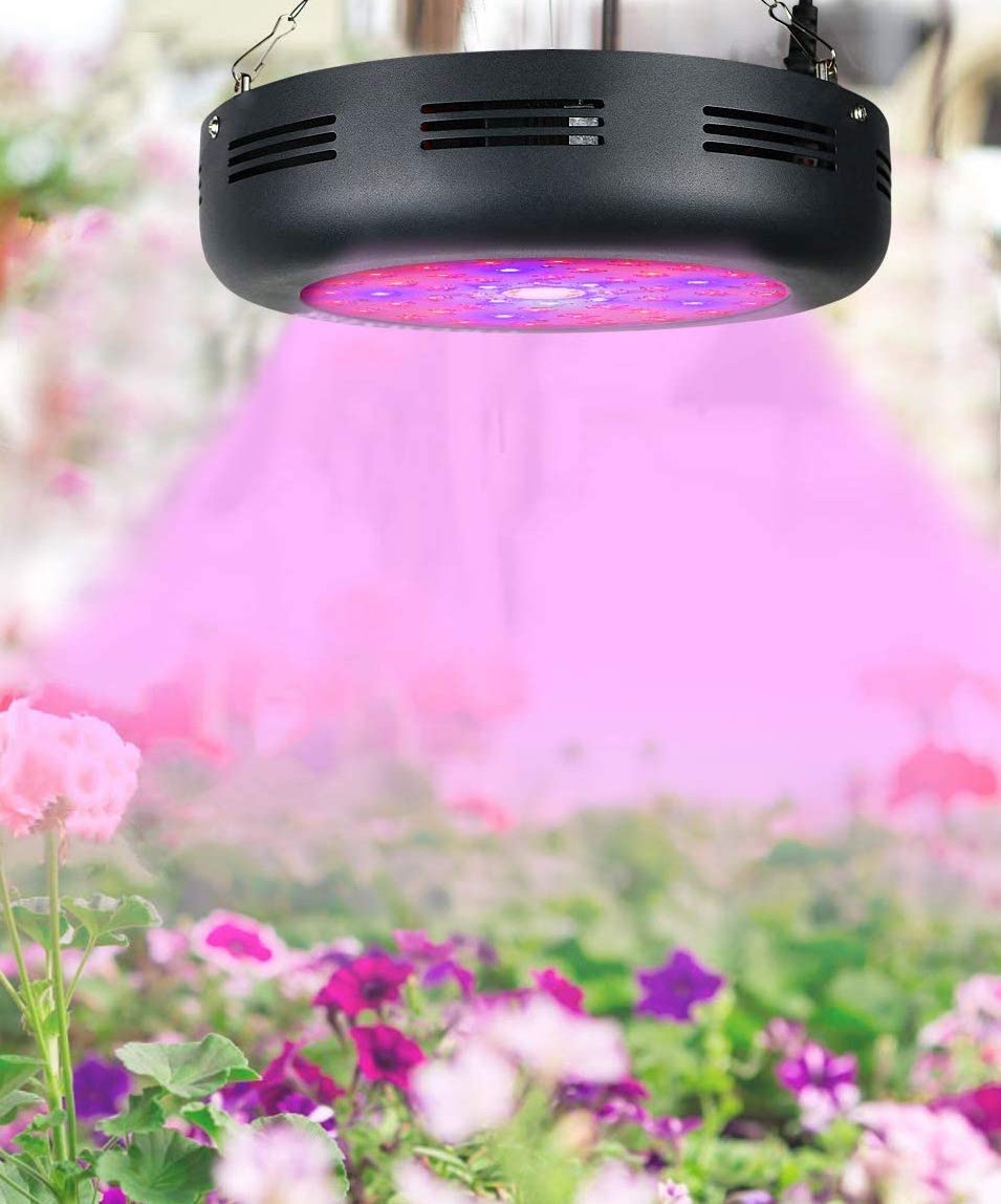 Best COB LED Grow Lights in [year] - [Buyer's Guide] 5