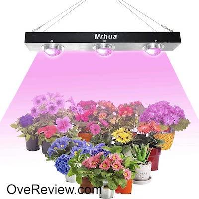 Mrhua 600W COB LED Grow Light