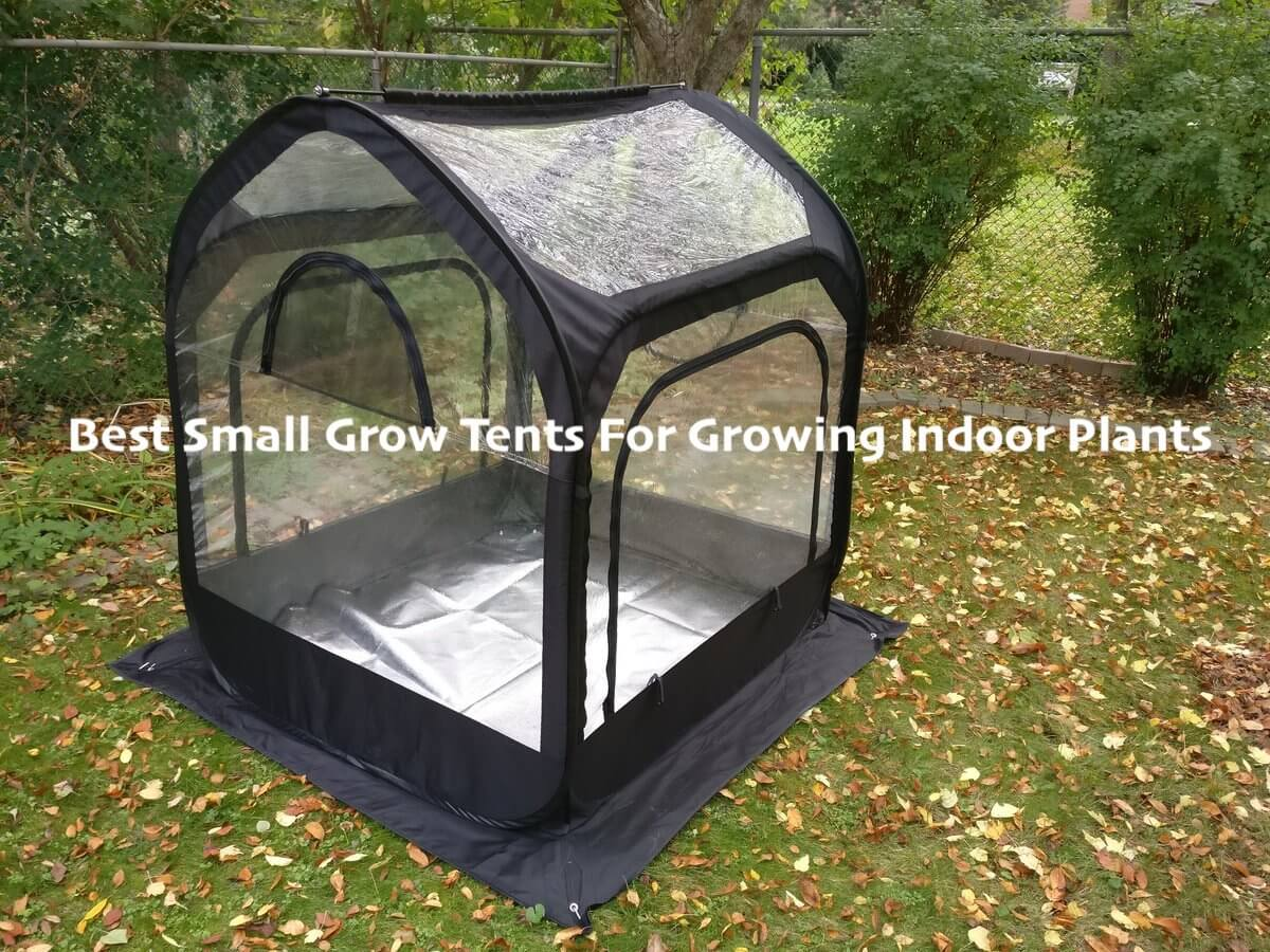 small Grow Tents